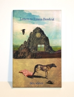 Letters to Emma Bowlcut book cover